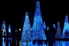 Passez un Noël 2017 magique à Orlando