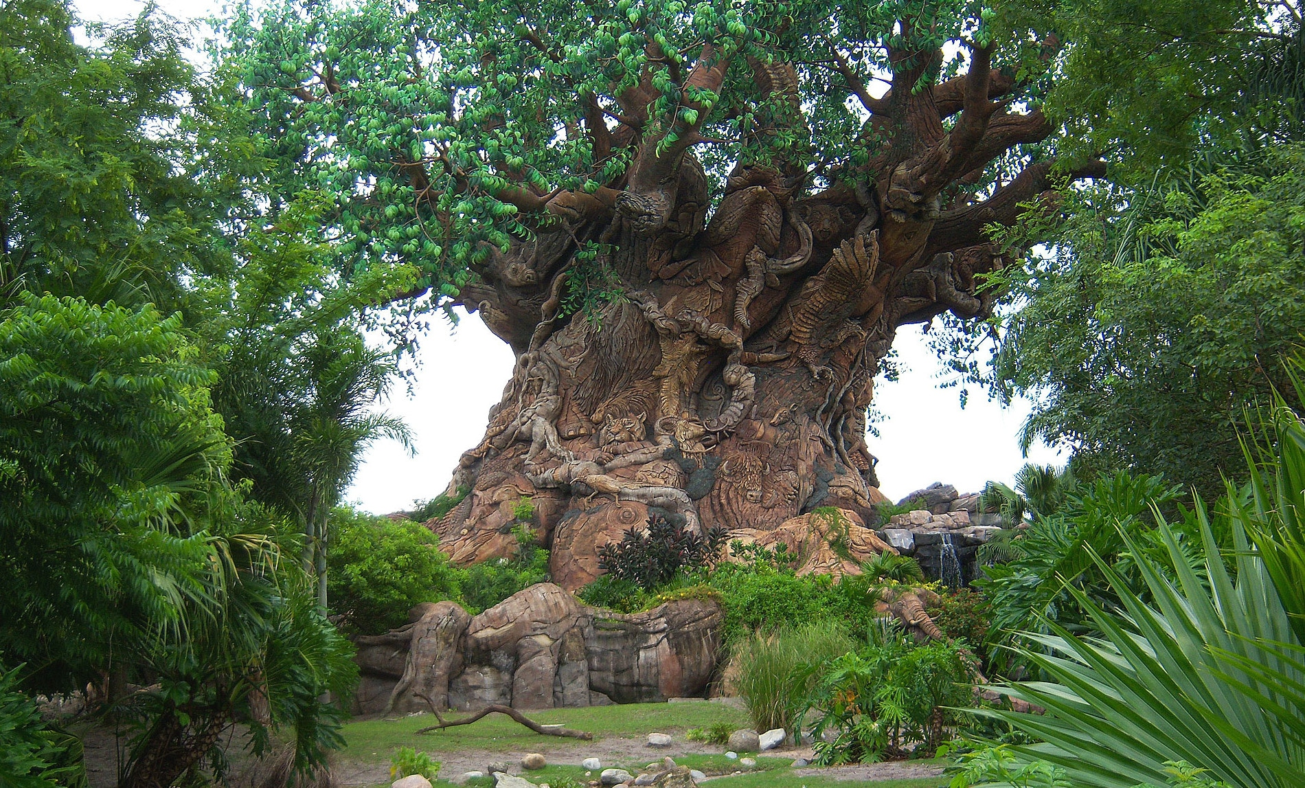 "Arbre de ""vie"" d'Animal Kingdom en Floride"